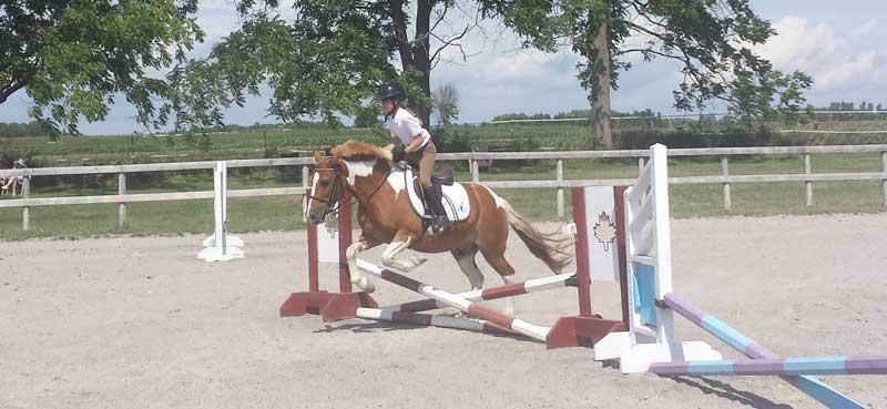 fiona-horse-2